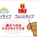トイプードルにピッタリのドッグフードの選び方|6つの項目で選ぼう