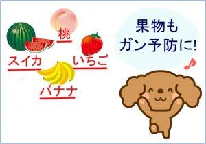 犬も果物でガン予防