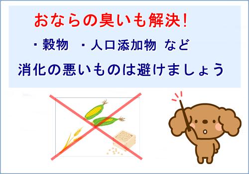 トイプードルのおならの臭いを解決するためのおすすめドッグフード