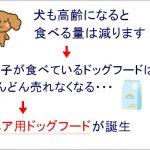 【定番】トイプードルのシニア期に重宝する本格派ドッグフード