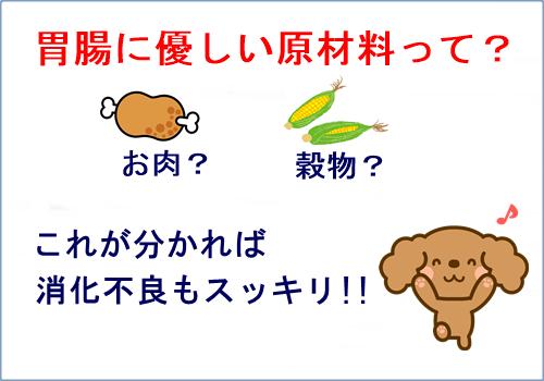 トイプードルの消化不良にオススメのドッグフード