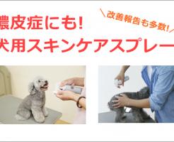 犬用スキンケアスプレーのすすめ!膿皮症などの皮膚トラブルにもおすすめ