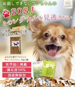 犬用サプリ「サミーフィッシュ」